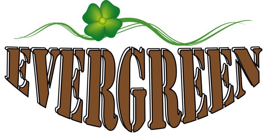 Torino studio logo e design